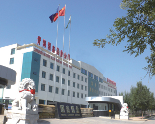 Qinghai Guoxin Aluminum Industry Incorporated Company