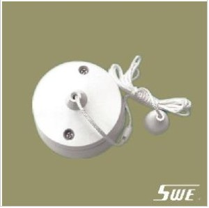 Pull Switch 10A 250V (V Range)