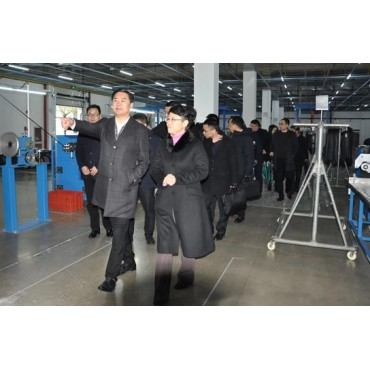 Wu Yufeng, district head of Fuyang district, paid an inspection visit to Hongshi