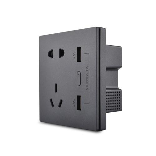 250V 10A Smart Zigbee Wall Socket with USB Charging Ports