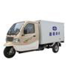 Tricyle cargo double cylindre