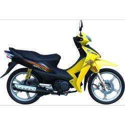 Moto club 125 cc