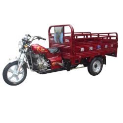 Triciclo JH200ZH-C  Leopardo (Dragón)