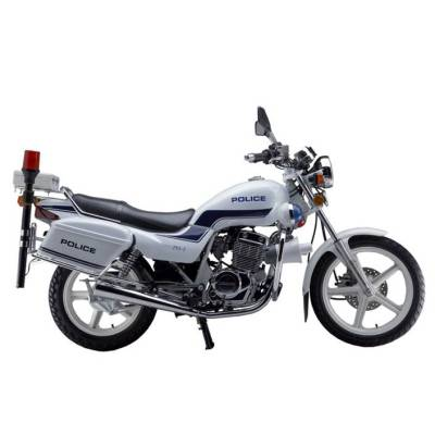 Motocicleta JP250-2J (605J)