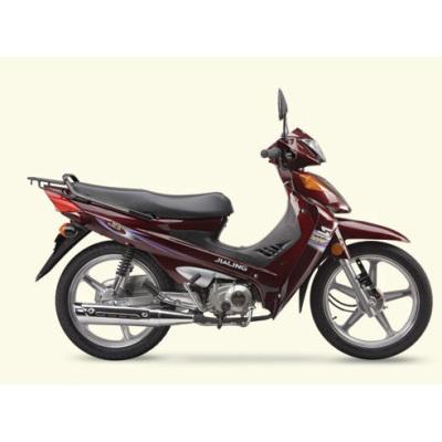 Motocicleta JL110-19