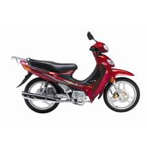 Motocicleta JL110-8