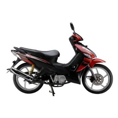 Motocicleta JP110-20 (343)