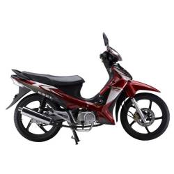 Motocicleta JP110-24(347)