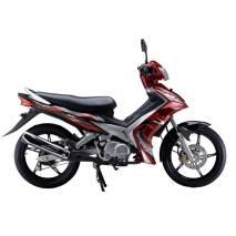 Motocicleta JP110-25 (348)
