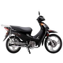 Motocicleta JP110-4(342)