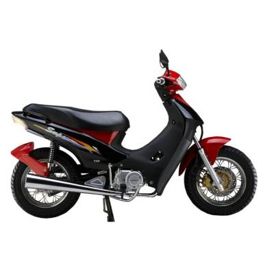 Motocicleta JP110-4II (306G)