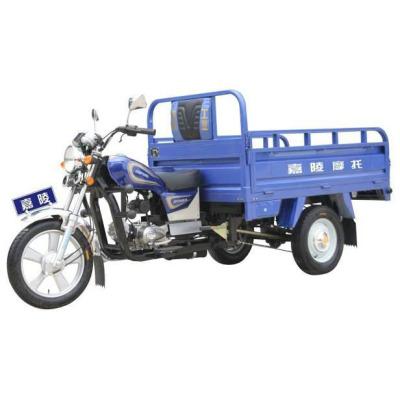 Triciclo JH110ZH-B Leopardo