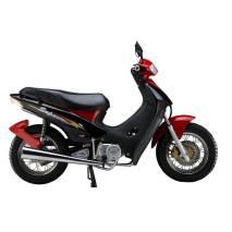 دراجة نارية JP110-4II(306G)