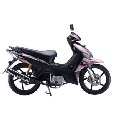 Moto JP110-24(344)