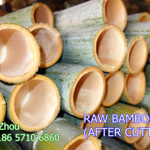 Bamboo Stick Machinery