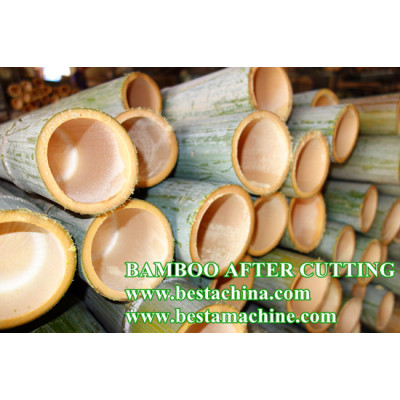 RAW BAMBOO SAWER