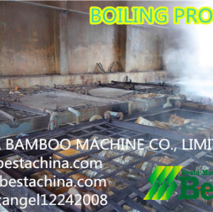 Wood Rotary Cutting Process, Ice- cream stick manufacturing process