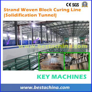 Strand Woven Curing Machine, Solidification Tunnel