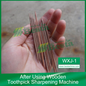 Wooden Toothpick Machine (WXJ-1)