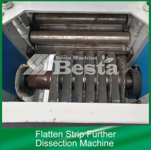 Flatten Strip Further Dissection Machine