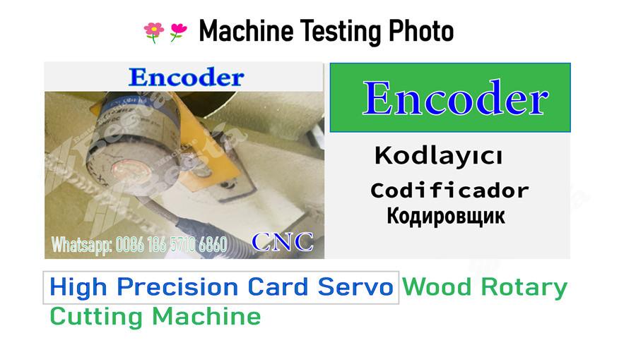 wood rotary cutting machine testing photo 2
