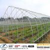 ASTM A500 Pre Galvanized steel pipe /tube!