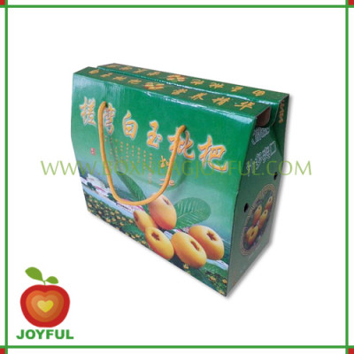 paper carton for fruit