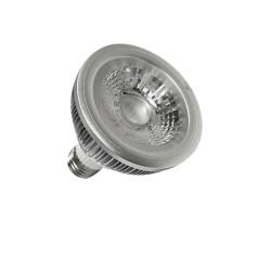 PAR 4W LED Spot Light