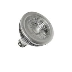 PAR 4W LED Spot Light
