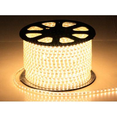 SMD3528 10MM wide DC12V 24W 60 LEDS flexible LED Strip