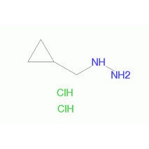 环丙基甲基肼双盐酸盐