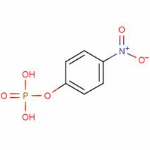 磷酸单硝基苯基酯