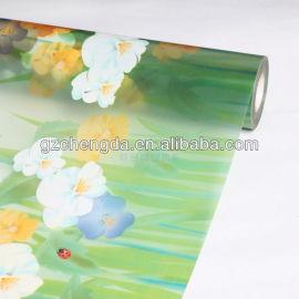 3k cor imprimir película de vidro