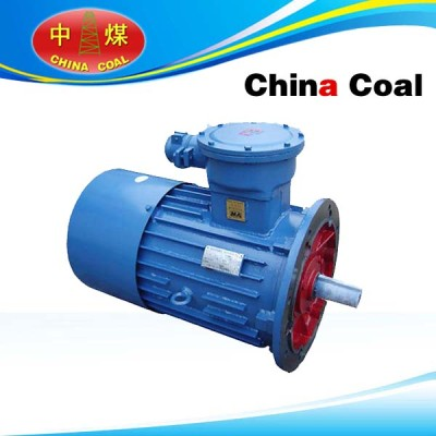 DSB Series Flame-proof Three-phase Asynchronous Motor