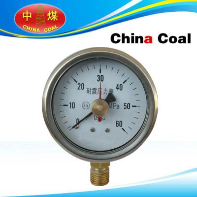 Double needle seismic pressure gauge