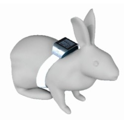 Implantable thermometer recorder for rabbit and mouse
