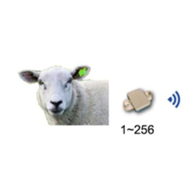 羊体温遥测系统—AI智能养殖装备