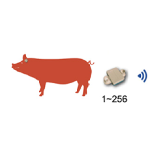 猪体温遥测系统—AI智能养殖装备
