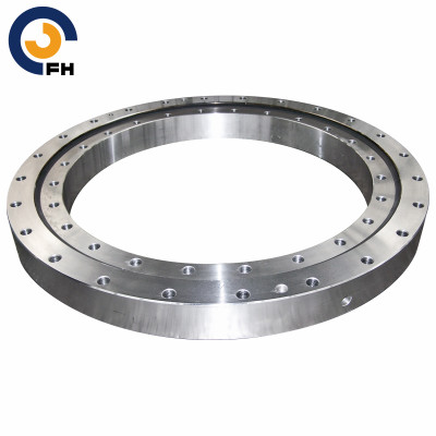 Leader of Slewing Ring Bearing
