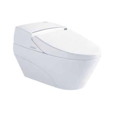 Automatic quiet one piece water closet