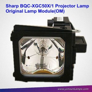 Mercury lamp for Sharp BQC-XGC50X/1 projector lamp replacement