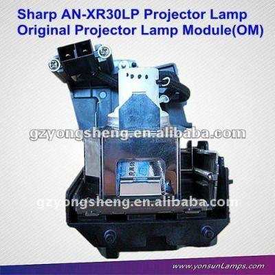 Lampada del proiettore/lampade a mercurio an-xr30lp/pgf200x/con alloggiamento per pg-f150x