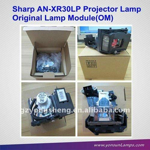 مصباح بروجيكتور / الزئبق الإسكان AN-XR30LP/PGF200X/with مصابيح للPG-F150X