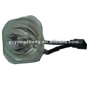 Bqc-xgnv5xu/1 lámpara del proyector para sharp con una excelente calidad