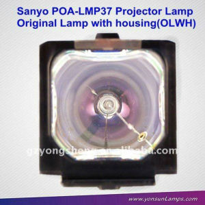 وحدة المصباح الأصلي( om) poa-lmp37 للمصباح ضوئي سانيو