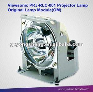La lámpara del proyector dt00431/prj-rlc-001 con vivienda para viewsonic pj750/751