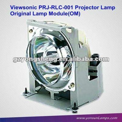 Projektor lampe dt00431/prj-rlc-001 mit gehäuse für viewsonic pj750/751