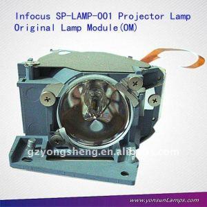 من مصباح ضوئي تحت المجهر sp-- مصباح-- 001 lp790 عن الإسقاط