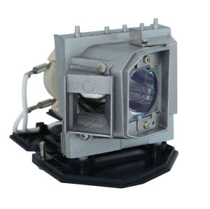 Optoma BL-FP240B / SP.8QJ01GC01 Projector Lamp
