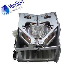 Pair of Original Projector Lamps R9852940 for Barco RLM G5 projector G5i H5 R6+ R6 P-VIP 250W